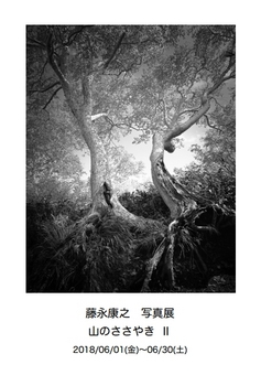 201806fujinaga.jpg